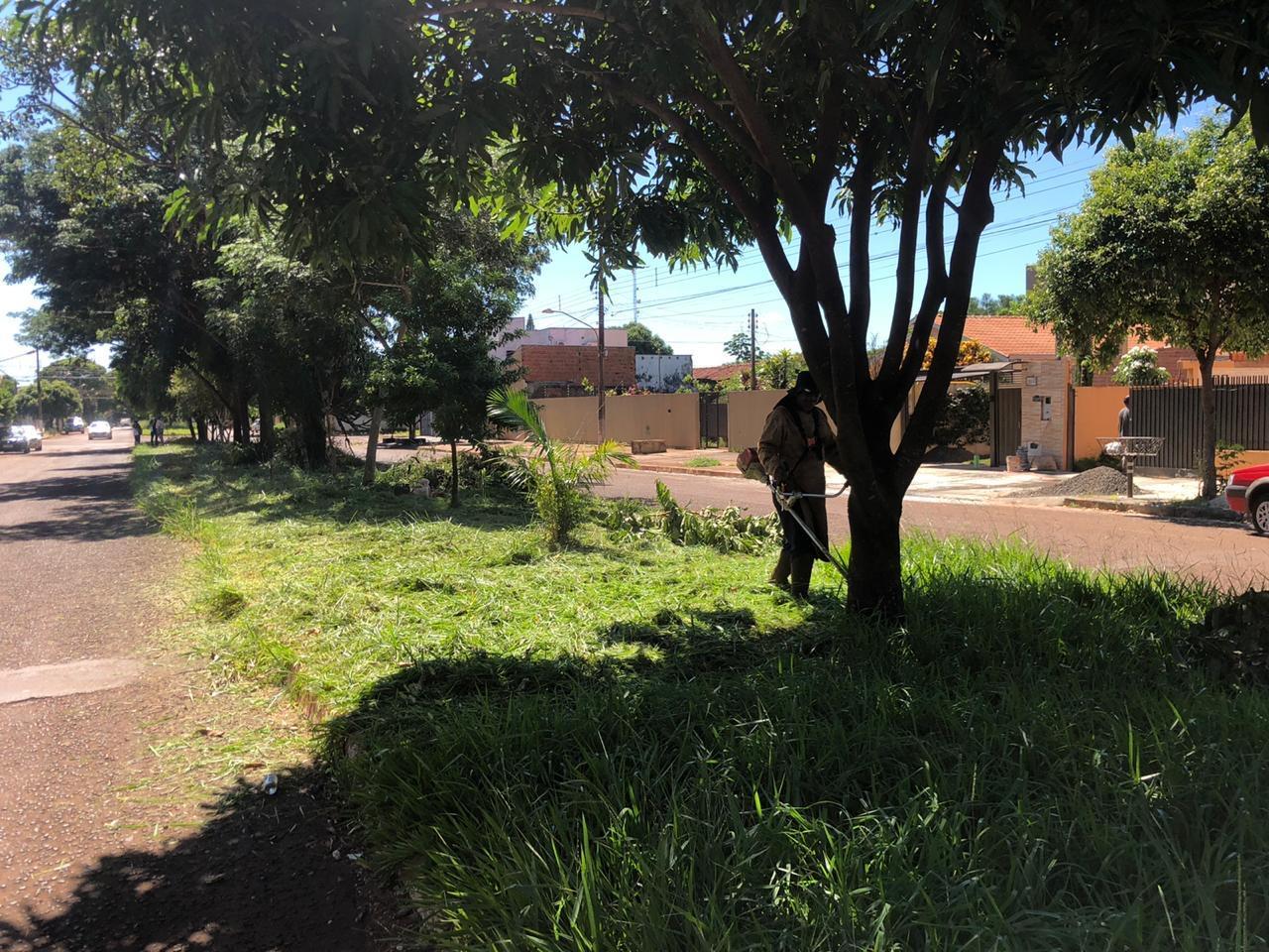 Rotary organiza limpeza e roçada para ajudar Dourados