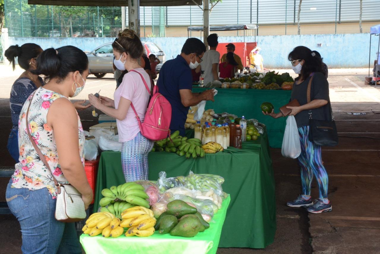 Feira Agroecológica voltar a funcionar no Parque do Ipês